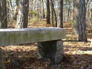 houghton garden bench