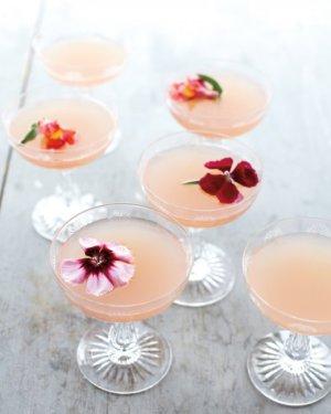spring cocktails - martha stewart