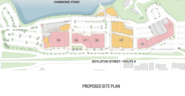 the-street-in-chestnut-hill-proposal